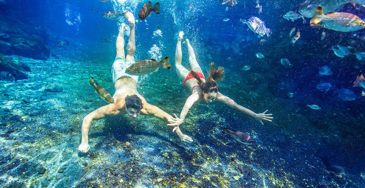 1071_UEo_CRY_Upolu_Piula-Cave-Pool-06