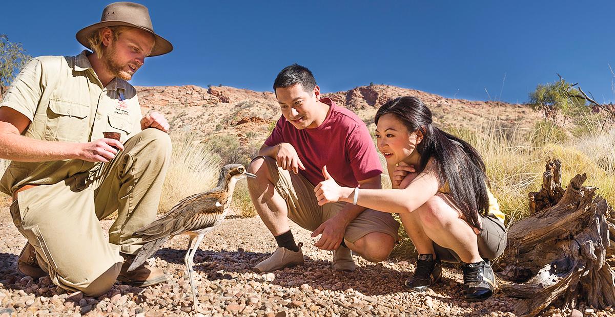 SIGN-1071_NT_Alice-Springs-Desert-Park