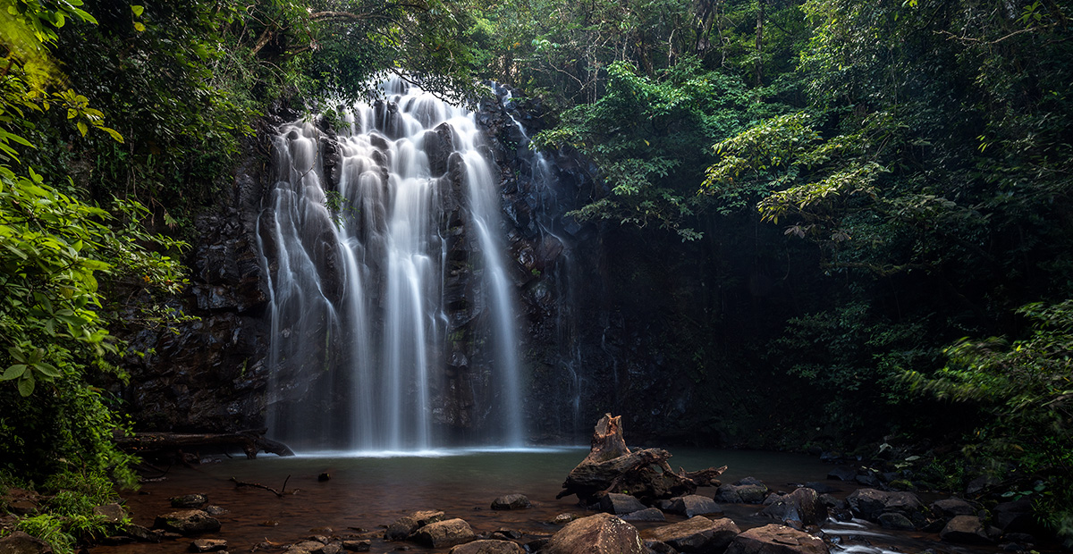 Tablelands_Waterfalls_Ellinja_Falls