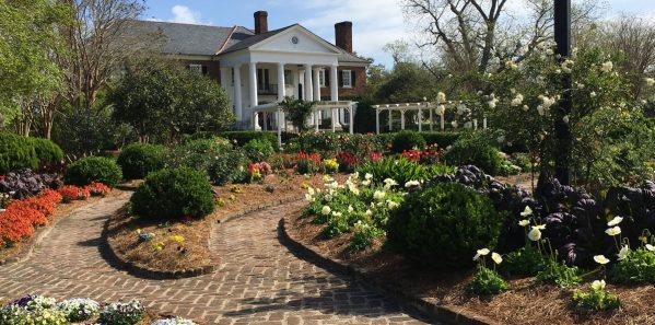 Boone_Hall_Plantation_Gardens
