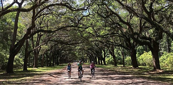 Charleston_Bicycle_Tours