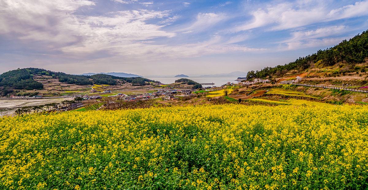 CheongsandoIsland